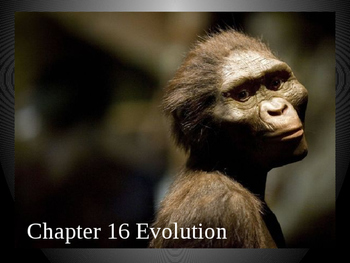 Evolution and Population Genetics