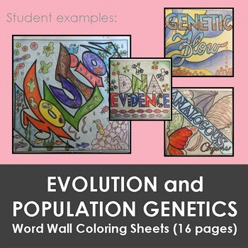 Evolution and Population Genetics Word Wall Color Sheets Bundle (15 pages)
