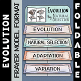 Evolution by Natural Selection Foldable - Great for Interactive Notebooks