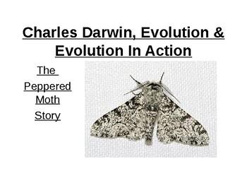Evolution in action.