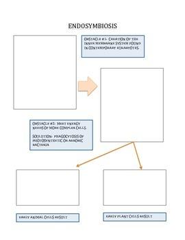 Evolution of Cells - Endosymbiosis Worksheet/Graphic Organizer