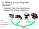 Evolution of Species PowerPoint Presentation