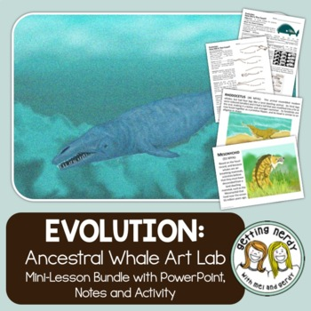 Evidence of Evolution - PowerPoint and Handouts