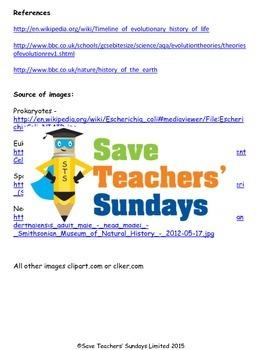 Evolution timeline Lesson plan and Worksheet / Activity