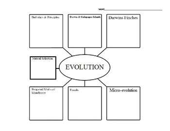 Evolution vs. Creationism vs. Intelligent Design Graphic Organizer