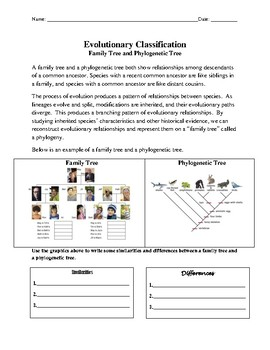 Cladogram Comparison:  Evolutionary Classification Using a Cladogram