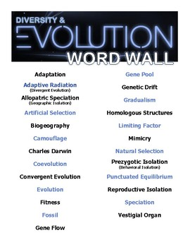 Evolutionary Diversity Word Wall Poster