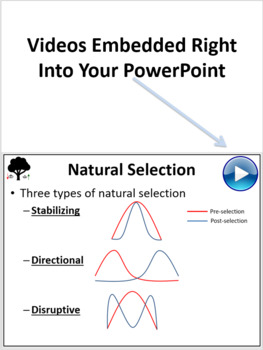 Evolutionary Mechanisms - PowerPoint Lesson and Student Notes