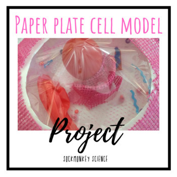 ExCELLent Paper Plate Cell Model Project {Eukaryotic Cell Structure}