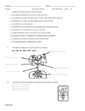 Examen sobre Las plantas