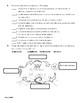 Examen sobre el tiempo, instrumentos y ciclo del agua