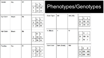Example Genetics Project - 2015
