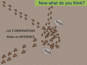 Excavating Evidence: A lesson on observation vs. Inference
