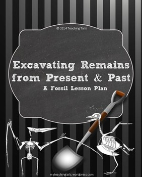 Excavating Remains: Fossil Lesson Plan