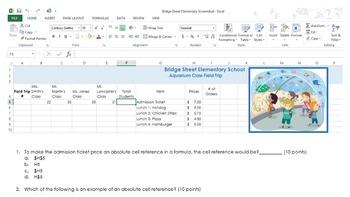 Excel 2013 Quiz IV