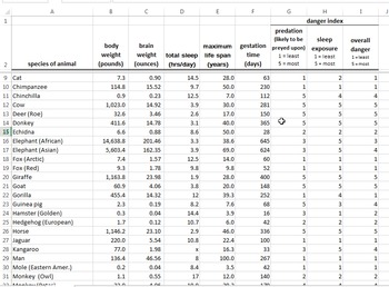Excel Formulas Bundle