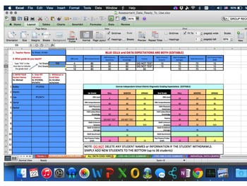 Excel Workbook Literacy and Math Data Monitoring (EDITABLE) Grade 3 and 4