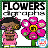 Exclusive Flowers Digraph Match-Up Sampler