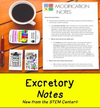 Excretory Notes
