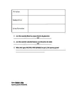 Excretory System Homework