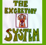 Excretory System Kidneys and Liver