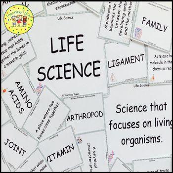 Excretory System Vocabulary Cards