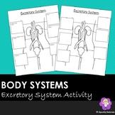 Excretory System Notes Outline