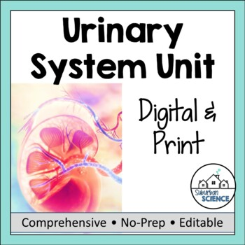 Excretory System- PowerPoint, Notes, & Diagrams