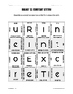Excretory System Puzzle