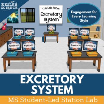 Excretory System Student-Led Station Lab