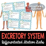 Excretory System Student-Led Station Lab
