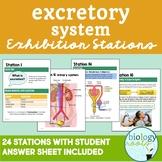 Excretory System Exhibition Stations