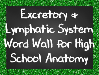 Excretory and Lymphatic System Word Wall for High School Anatomy