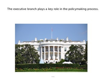 Executive Branch Roles and Powers PPT (CE.6d)