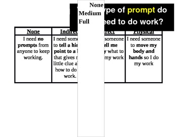 """Executive Functioning & Self-Awareness """"What level of prompting do I need?"""""""