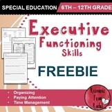 Executive Functioning Skills - FREEBIE