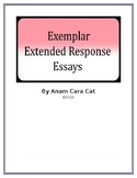 Exemplar Argumentative Essays: Bundle: 5 Essays