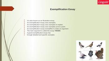 Exemplification (Illustration) Essay