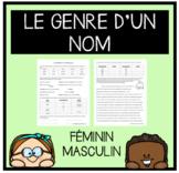 Exercices- Féminin et Masculin (FRENCH)