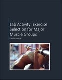 The Muscular System:  Lab Activity - Exercise Selection fo