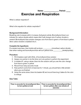 Exercise and Respiration Lab