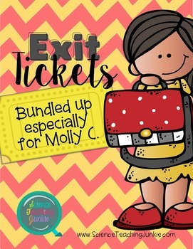 Exit Ticket Bundle- Special Order for Molly N.