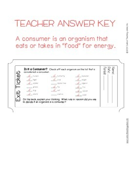 Exit Ticket (Exit Slip)- Is It a Consumer?
