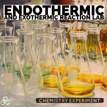 Exothermic and Endothermic Reactions Lab
