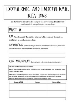 Endothermic And Exothermic Reactions Worksheet - Checks Worksheet