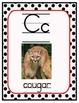 Exotic Animal Alphabet