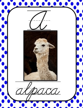 Exotic Animal Cursive Alphabet Posters with Real Pictures