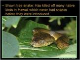 Invasive Exotic Species Lesson
