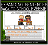 Expanding Sentences by Adding Adjectives Worksheets for Ba