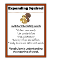 Expanding Squirrel Beanie Baby Strategy Poster